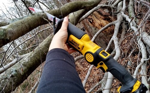 Pruning by a Reciprocating Saw